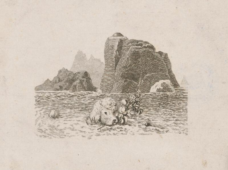 Stredoeurópsky grafik zo začiatku 19. storočia - Pes v mori