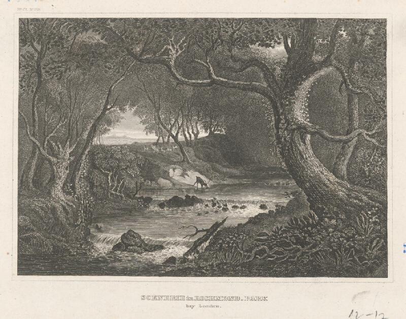 Stredoeurópsky grafik z 19. storočia - Čast parku Richmond pri Londýne