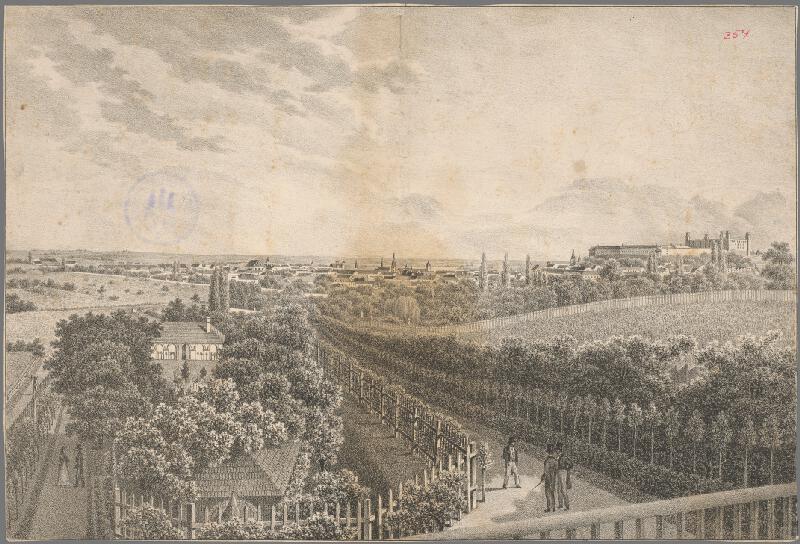 Ignaz Josef Weissenberg - Pohľad na Bratislavu