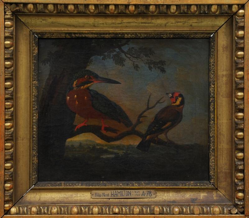 Philipp Ferdinand de Hamilton - Studie ptáků II