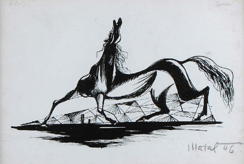Bohumír Matal - Kůň