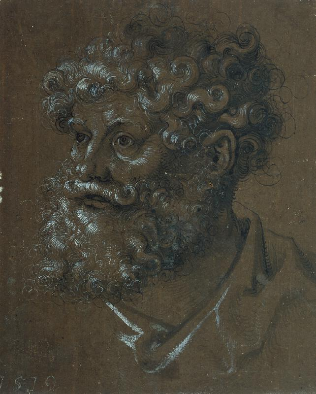 Hans Baldung Grien - Hlava muže s kudrnatými vlasy a vousy