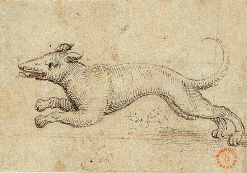 Virgil (Virgilius) Solis (S.V.) - Běžící pes