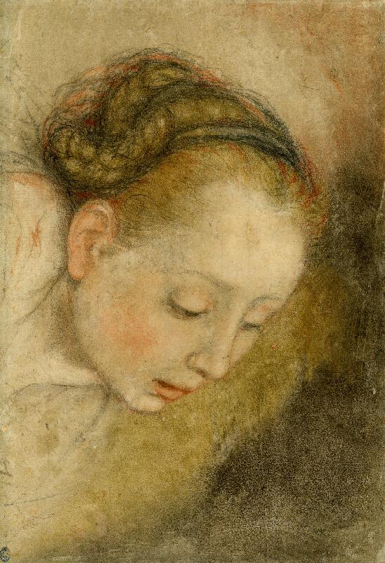 Federico Fiori zv. Barocci - dílna - Ženská hlava