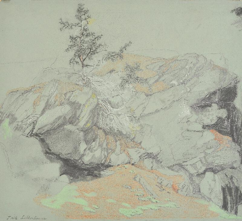 Fritz Silberbauer - Skály