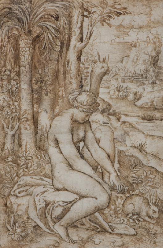 Marco Dente zv. Marco da Ravenna - Venuše zraněná trnem růže