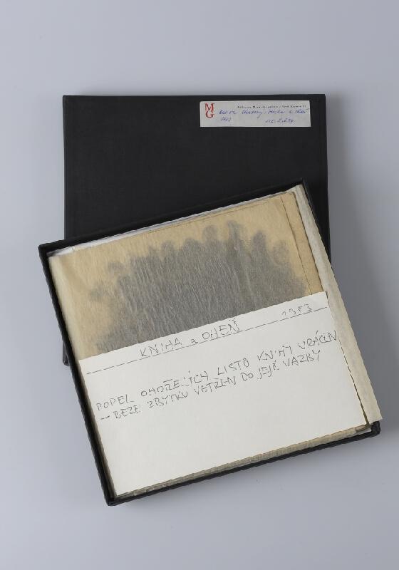 Dalibor Chatrný - Kniha a oheň