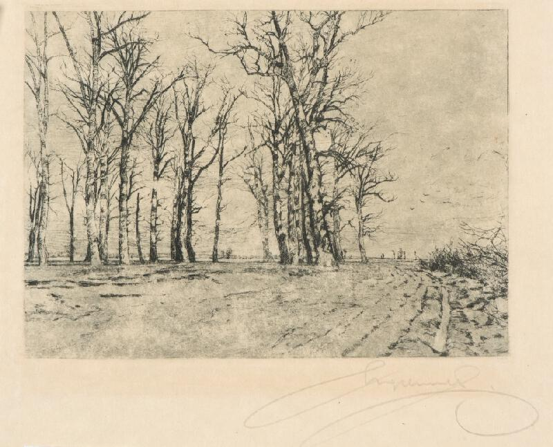Ferdinand Engelmüller - Stromy v předjaří