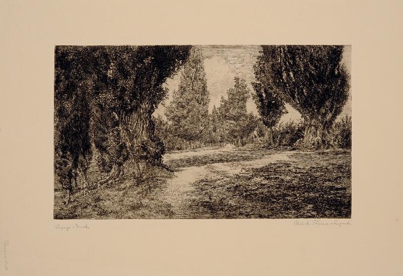 Carl Maria Thuma - Alej