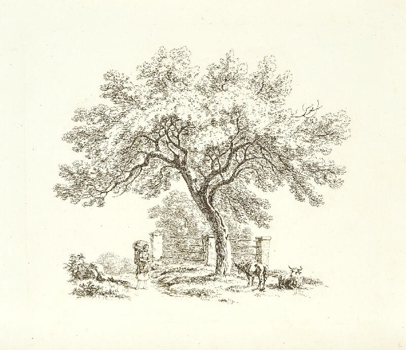 Antonín Mánes - Studie stromu se ženou na cestě s kravami