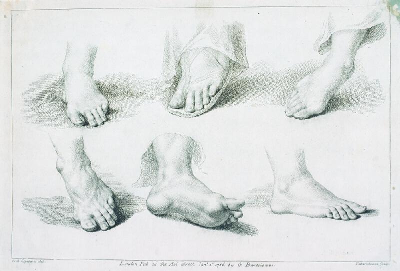 Giovanni Battista (Giuseppe ) Cipriani - Studie nohy