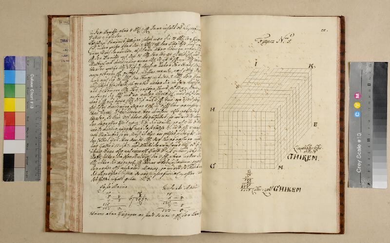 František Antonín Grimm - Die Fünf Species die Regula Detri in gantzen … die Regula Conversa quinque Societatis.