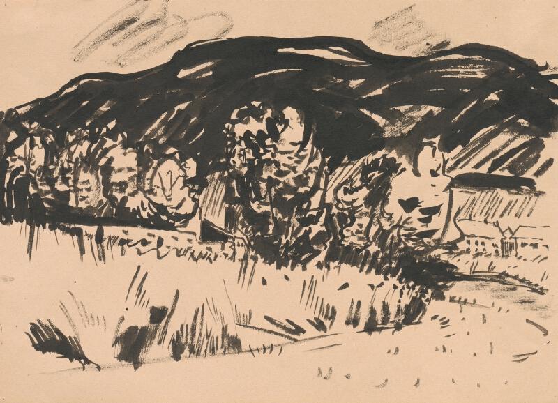 Viliam Chmel - Hornatá krajina so skupinou stromov