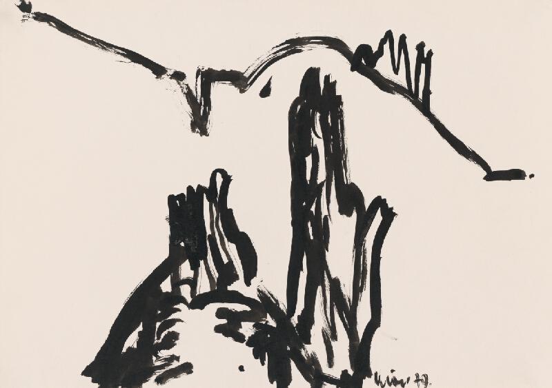 Fero Kráľ - Súľovské skaly