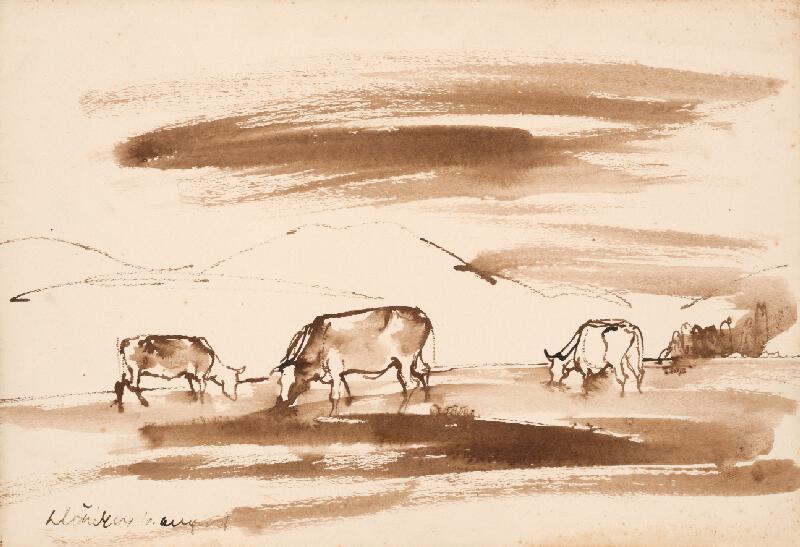 Vincent Hložník - Štúdia kráv