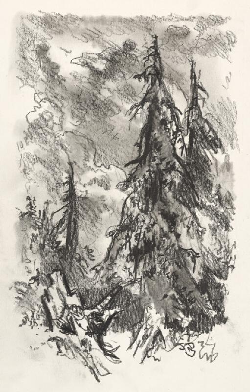 Jaroslav Vodrážka - Krajina VII