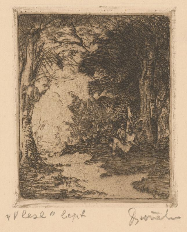 Anton Djuračka - V lese
