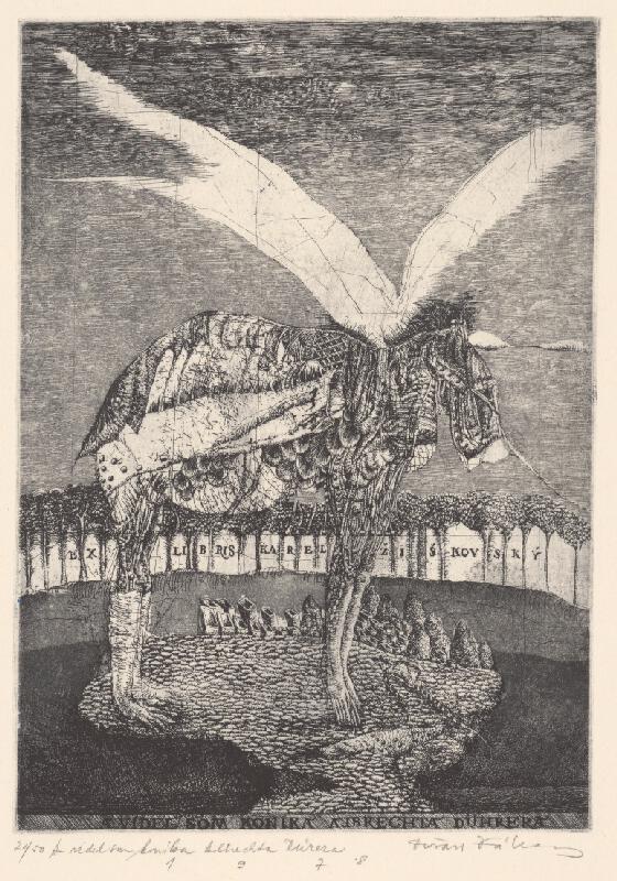 Dušan Kállay - A videl som koníka Albrechta Dürera