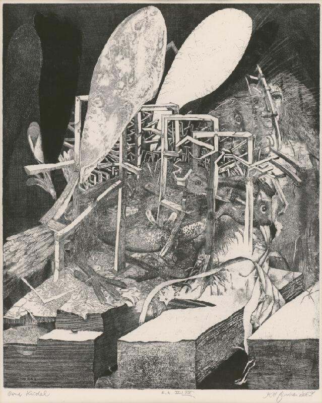 Karol Ondreička - Osud krídel