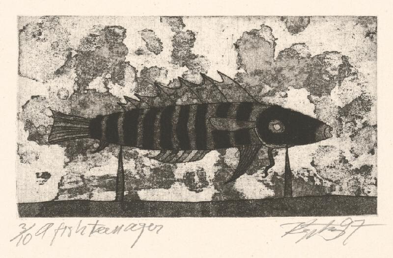 Rimvydas Kepežinskas - A Fish Teenager