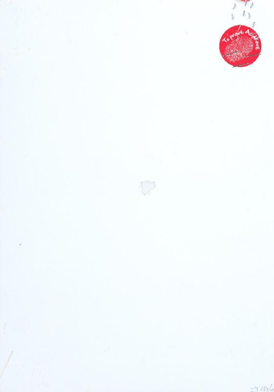 Stanislav Filko - Bez uvedenia názvu (projektart To pravé acidkové)