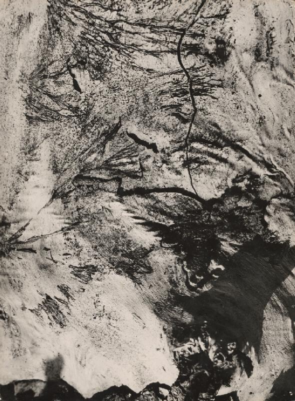 Otakar Nehera - Kôra I.