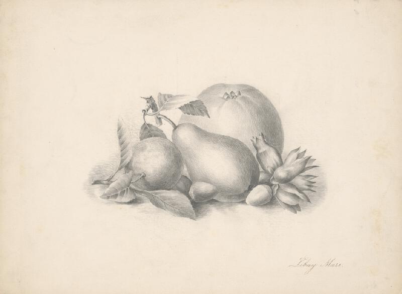 Mária Libayová - Zátišie s ovocím