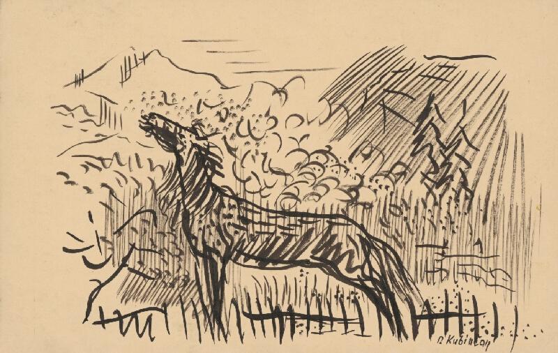 Arnold Peter Weisz-Kubínčan - Erdžiaci kôň