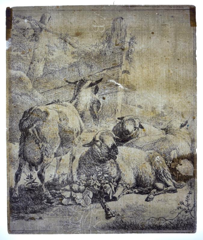 Johann Heinrich Roos – Barania črieda