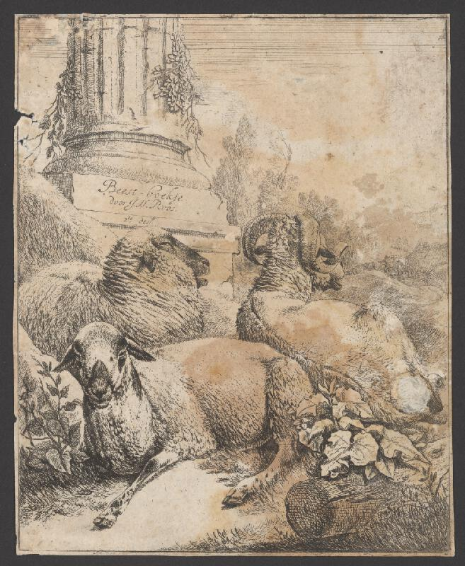 Johann Heinrich Roos - Ovce s baranom