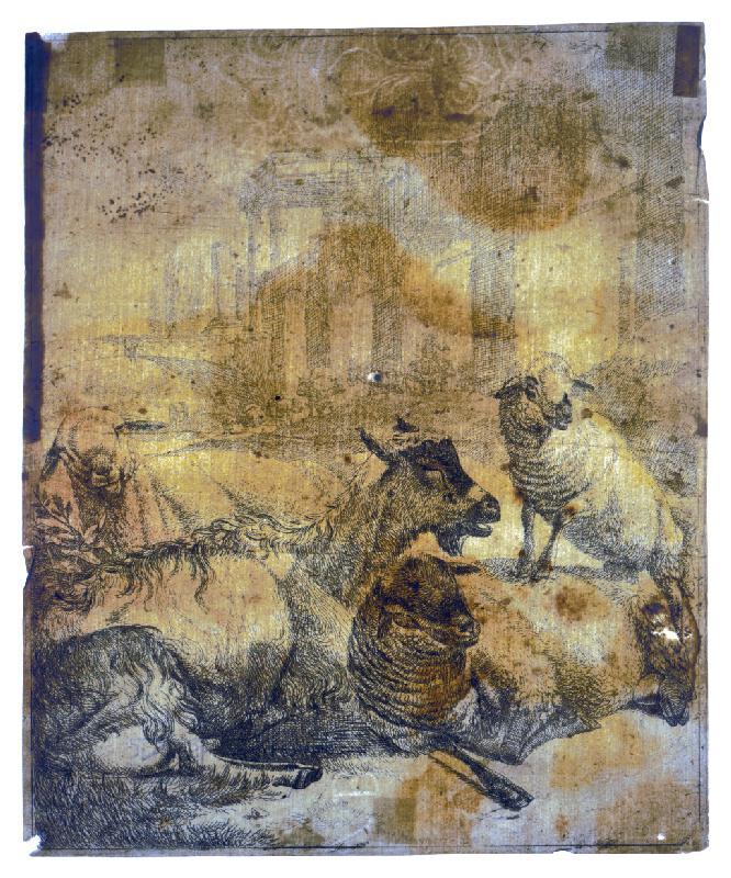 Johann Heinrich Roos – Ovce a kozy