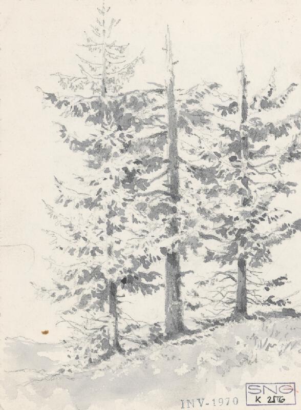 Friedrich Carl von Scheidlin - Štúdia troch stromov