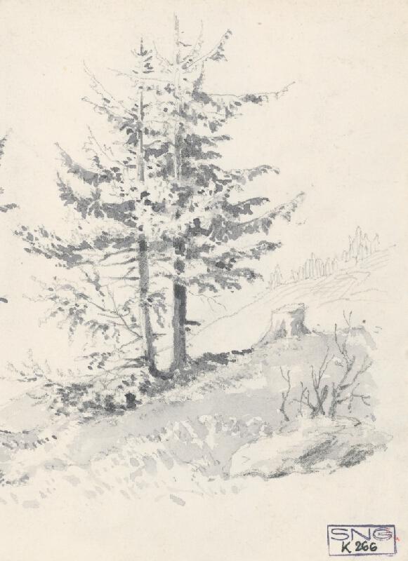 Friedrich Carl von Scheidlin – Horská krajina