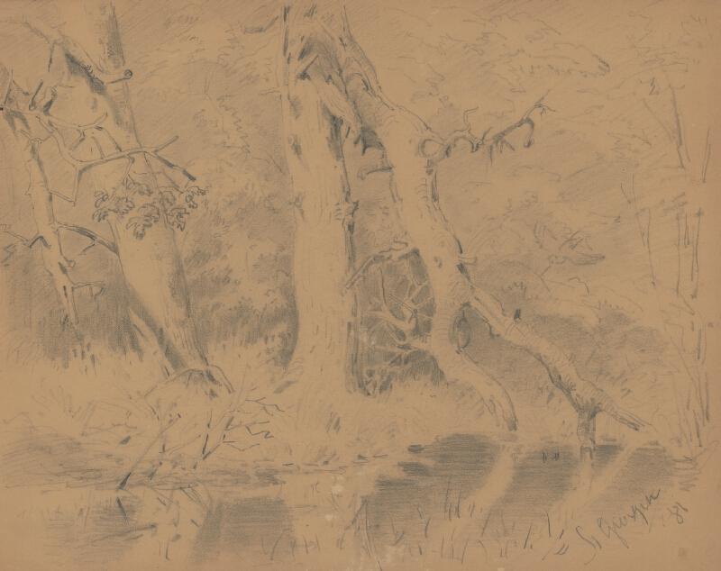 Friedrich Carl von Scheidlin - Lesné zákutie so zlomeným stromom