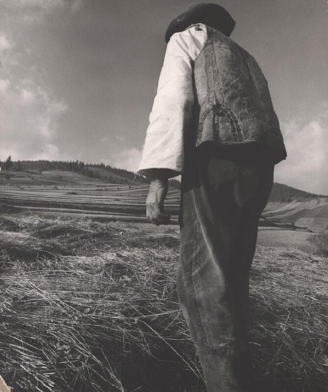 Martin Martinček - Práca stvárňuje zem IV.