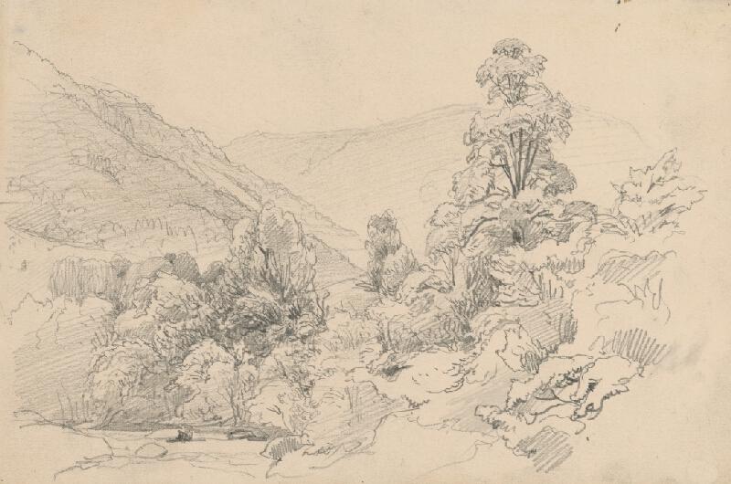 Jan Novopacký - Dolina s potôčkom