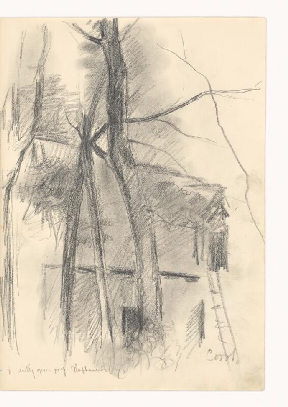 Dezider Milly - Kresba podľa Corota (Strom)