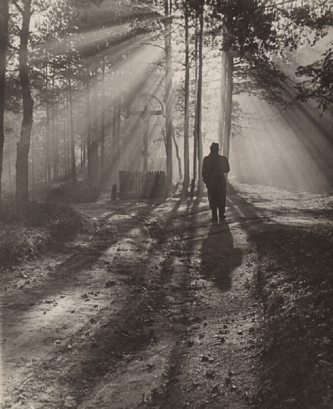 Ján Halaša – Jesenné ráno (K cieľu)