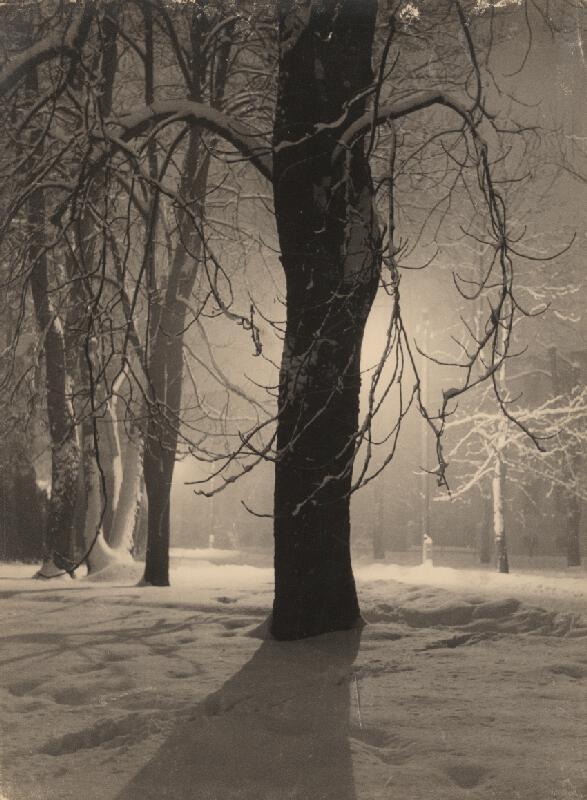 Ján Halaša – Večer v parku