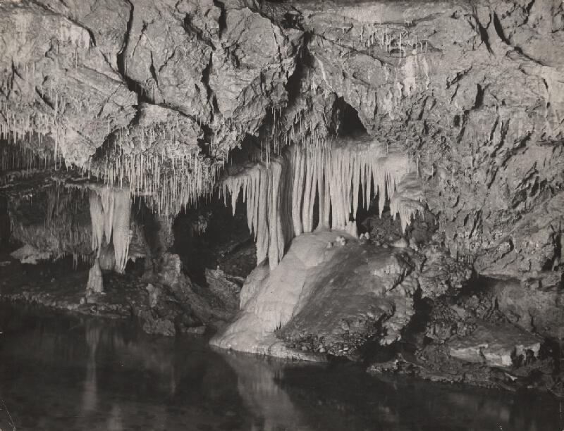 Ján Halaša – Demänovská ľadová jaskyňa. Strom života