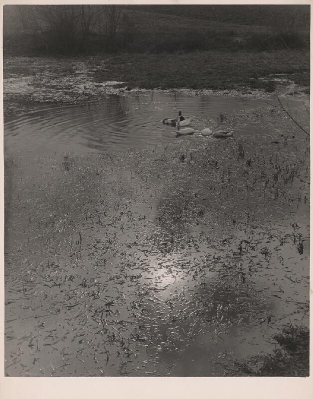 Ján Halaša – Na rybníku