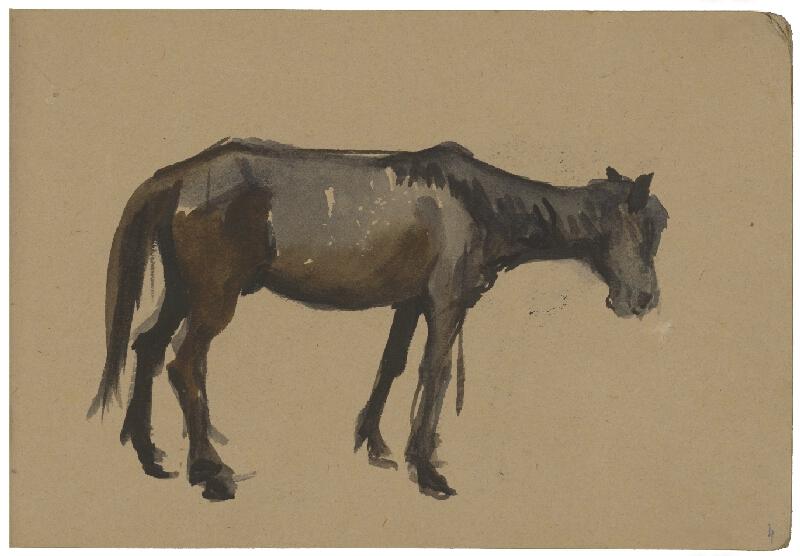 Margita Czóbelová – Náčrt koňa II.