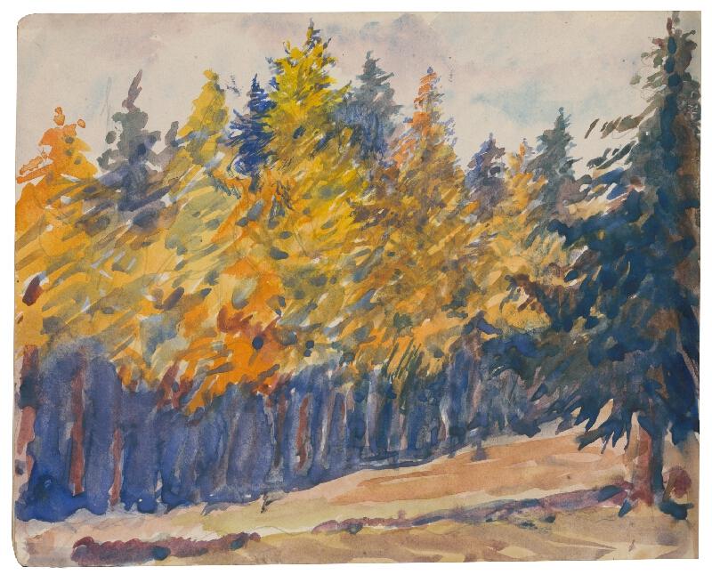 Margita Czóbelová - Náčrt lesa na jeseň