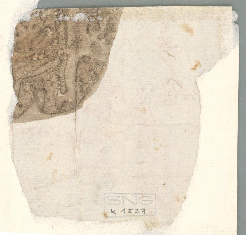 Stredoeurópsky maliar z 18. storočia – Štúdia otvorenej ľavej ruky