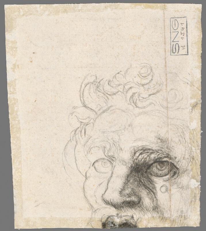 Stredoeurópsky maliar z 18. storočia - Štúdia ležiaceho chlapčenského polaktu