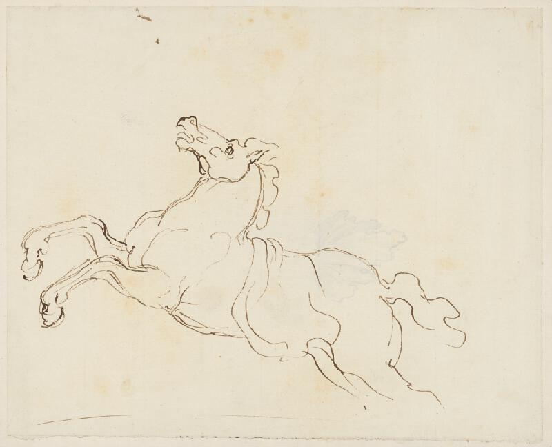 Vincenzo Camuccini – Štúdia vzpínajúceho sa koňa