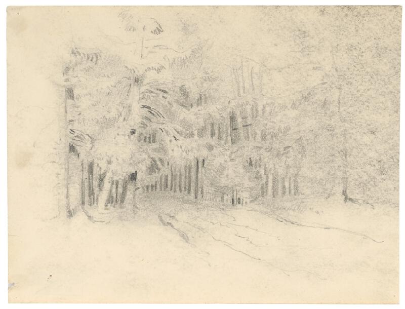 Friedrich Carl von Scheidlin - Lesný interiér s cestičkou