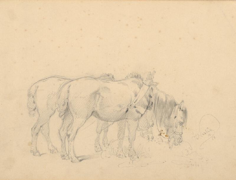 Friedrich Carl von Scheidlin - Štúdia dvoch pasúcich sa koní