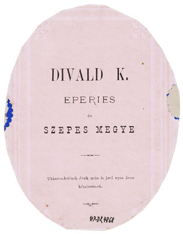 Karol Divald – Portrét ženy