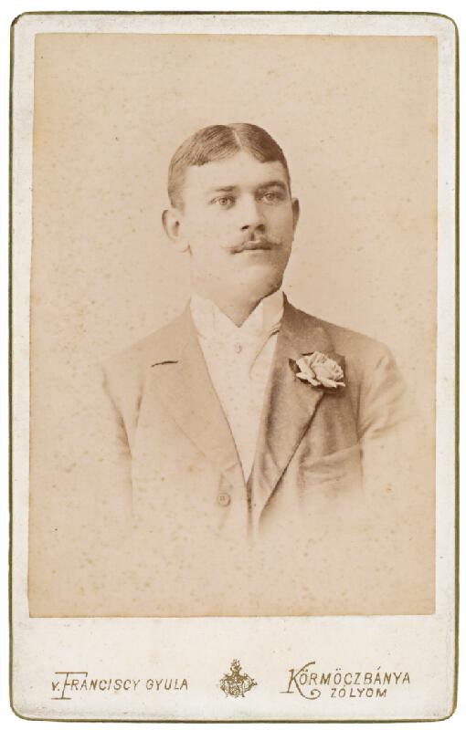 Gyula Franciscy - Portrét muža